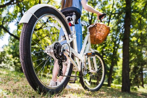 Low angle back wheel of a bike Free Photo