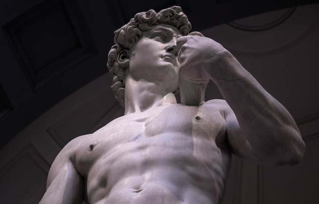 Low angle shot of michelangelo's david in the gallery of the academy of florence Free Photo