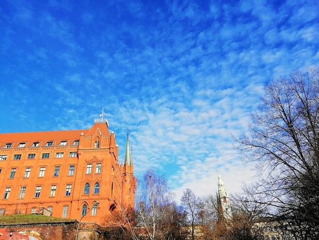 Снимок под низким углом собора, окруженного голыми деревьями, под облачным небом в щецине, польша Бесплатные Фотографии