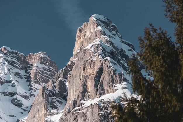 Низкий угол обзора части горного хребта с деревьями под ним зимой Бесплатные Фотографии