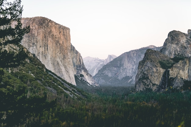 Низкий угол выстрела красивых пейзажей зеленого леса под скалами и небо на заднем плане Бесплатные Фотографии