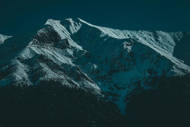 Снимок под низким углом заснеженных горных вершин с альпийскими деревьями на рассвете Бесплатные Фотографии