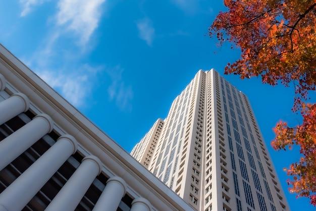 흐린 푸른 하늘 아래 나무 근처 키 큰 유리 건물의 낮은 각도 샷 무료 사진