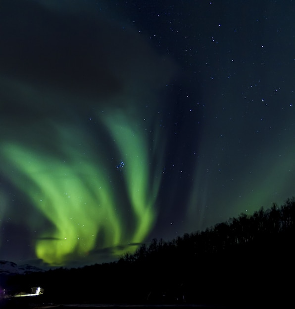 노르웨이의 녹색 오로라 보 리 얼리 스의 낮은 각도 Sot 무료 사진