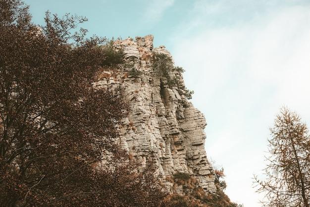 Inquadratura dal basso di un'alta montagna rocciosa circondata da alberi sotto il cielo blu durante la luce del giorno Foto Gratuite