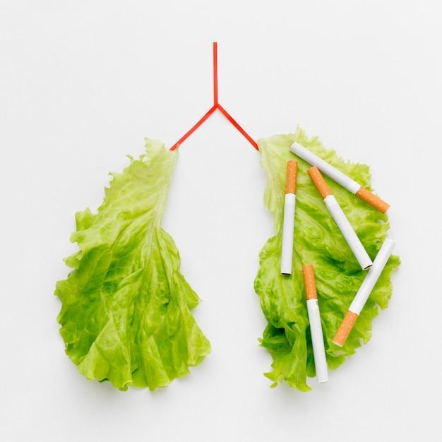 Lungs shape with salad and cigarettes Free Photo