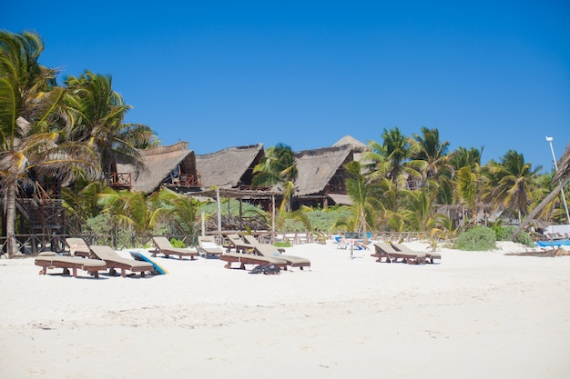 Luxury hotel at tropical resort on ocean shore with palm trees Premium Photo