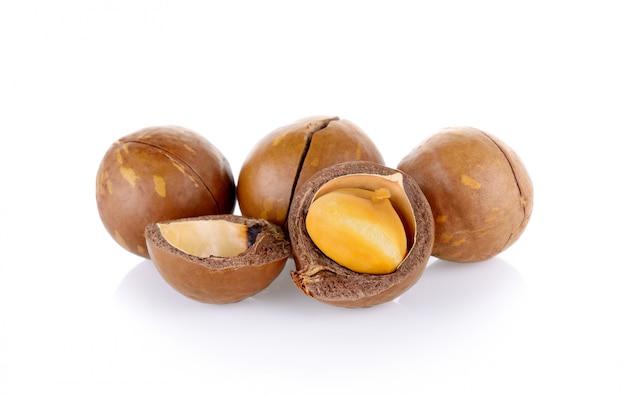 Орехи макадамии Premium Фотографии