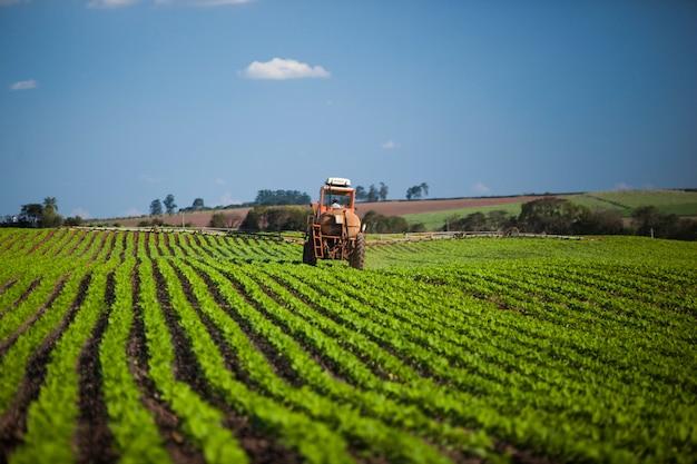 Машина работает на арахисовом поле под голубым небом. сельское хозяйство. Premium Фотографии