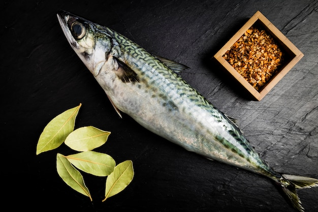Mackerel fresh fish with some laurel leaves and some spices on a black slate table Premium Photo