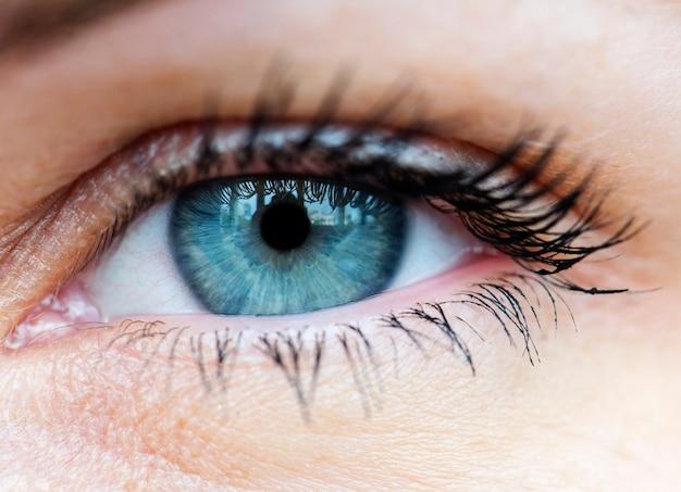 Macro closeup of human blue eye Premium Photo