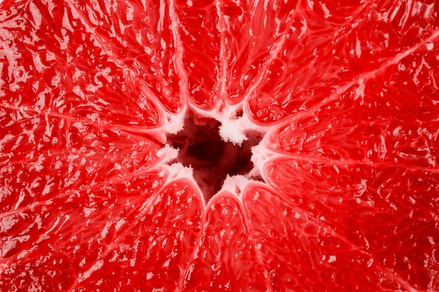 Macro of grapefruit structure as background Free Photo