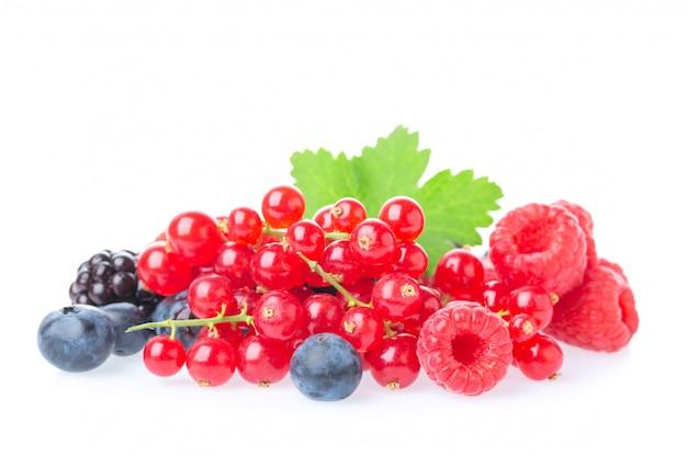 新鮮なラズベリー、ブルーベリー、ブラックベリー、赤スグリ、白い背景で隔離の葉とブラックベリーのマクロ撮影。 Premium写真