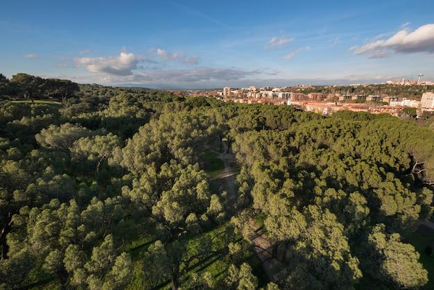 Madrid cityscape aerial view from casa de campo. Premium Photo