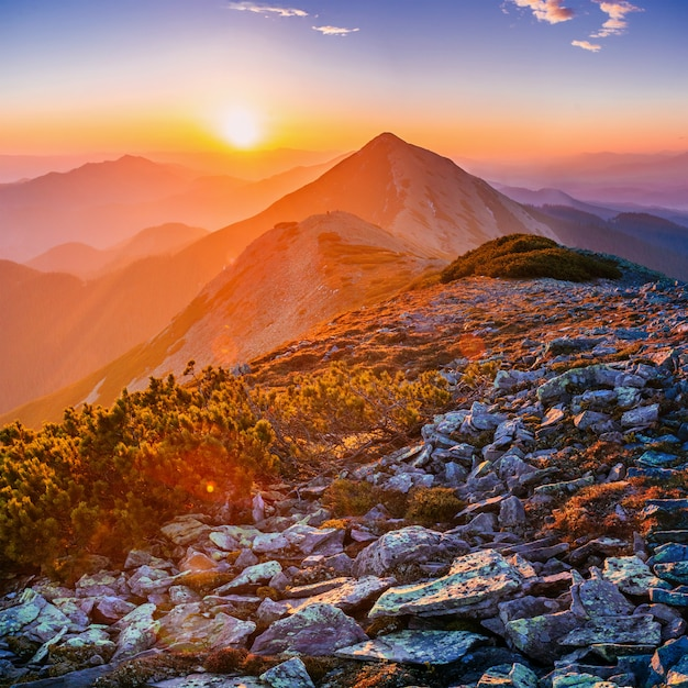 Magic sunset in the mountains Premium Photo