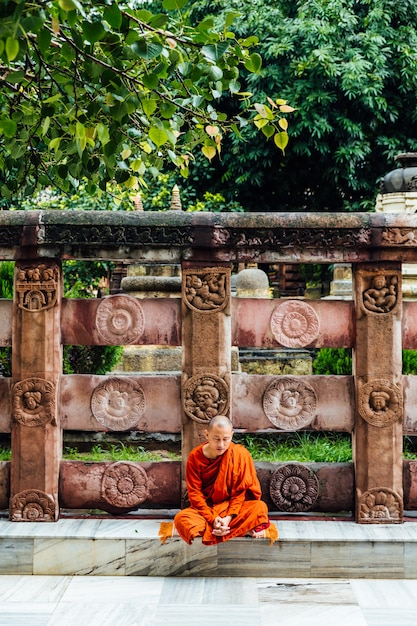 Mahabodhi寺院の近くの菩提樹の近くの瞑想のインド仏教の僧侶。 Premium写真