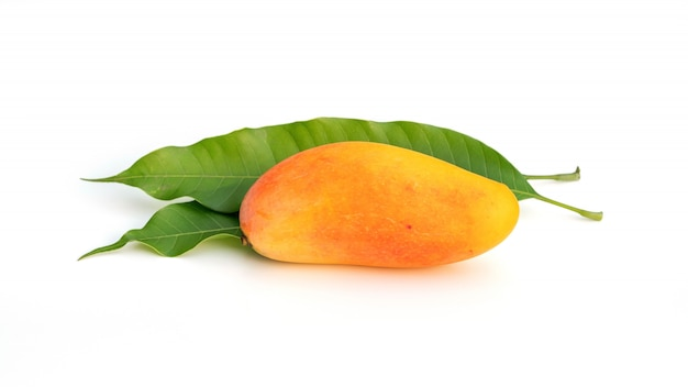 Mahachanok or rainbow mango on a white background. Premium Photo