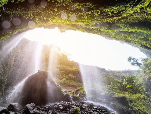 Majestic madakaripura waterfall flowing on rocky cliff Premium Photo