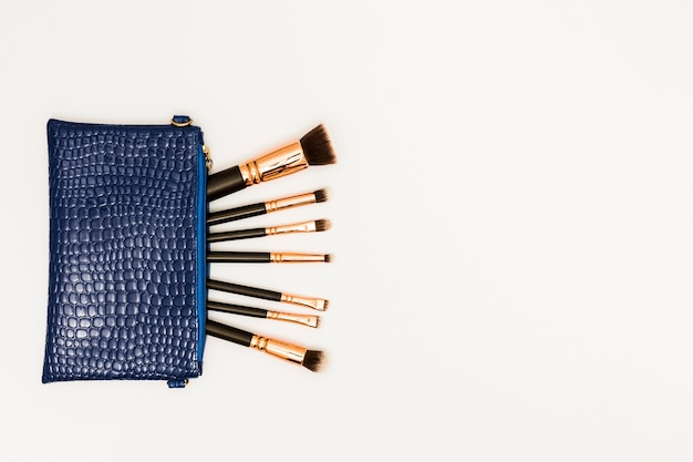 Makeup brushes in the blue bag on white background Free Photo