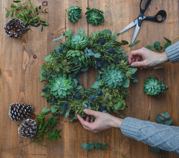 Making green christmas wreath with suculents. Free Photo