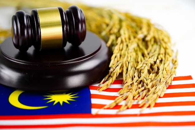 Malaysia flag and judge hammer with gold grain. law and justice court concept. Premium Photo