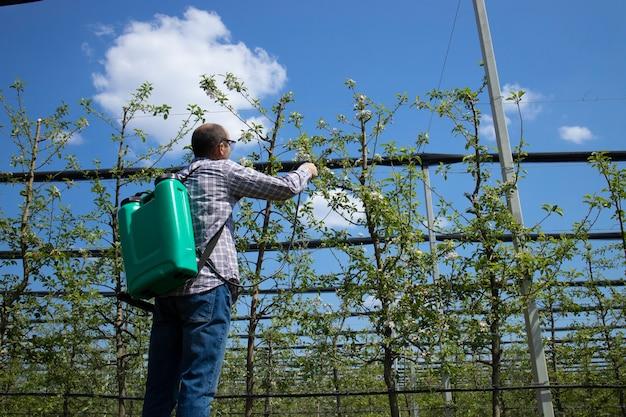 果樹園でリンゴの木を農薬で処理する男性農学者 無料写真