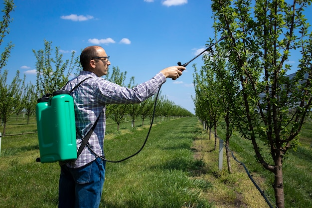 Male agronomist treating apple trees with pesticides in orchard Free Photo