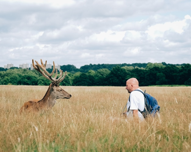 Male elk standing in front of a man with a backpack Free Photo