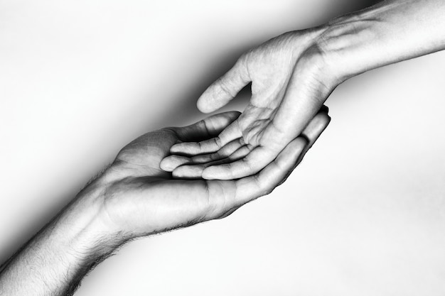 Male and female hands together. the black and white picture Premium Photo