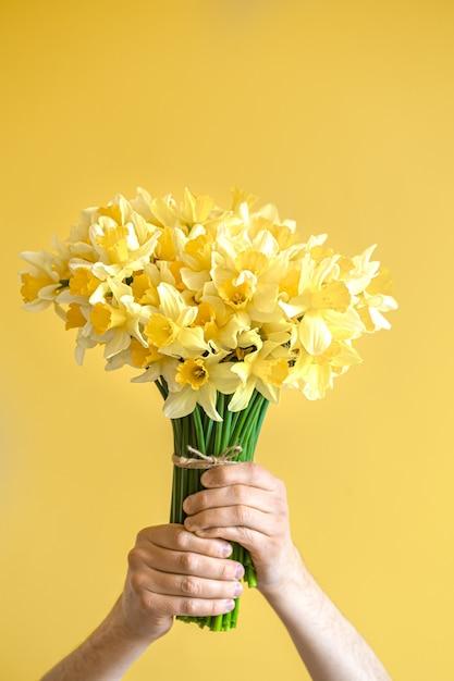 黄色い水仙の花束を持つ男性の手。 Premium写真