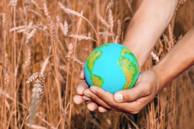 Male hands with earth planet model on a background of ears of wheet in a countryside, worldwide agriculture symbol Premium Photo
