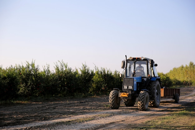 Man driving tractor through field Free Photo