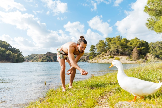 Man feeding goose on shore Free Photo