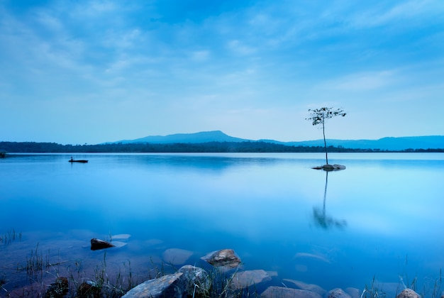 A man fishing on the boat near the tree. the blue water in the lake is very smooth . Premium Photo