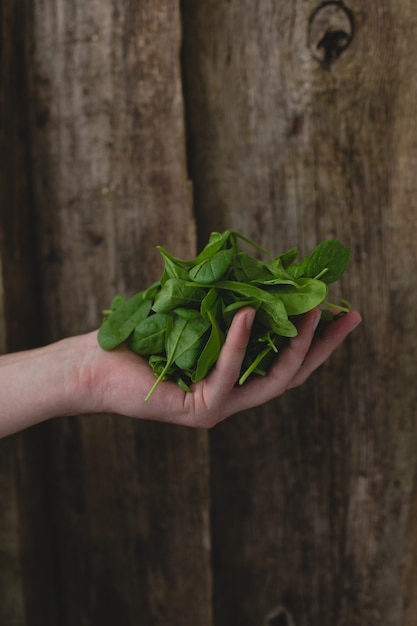 Man holding spinach Free Photo