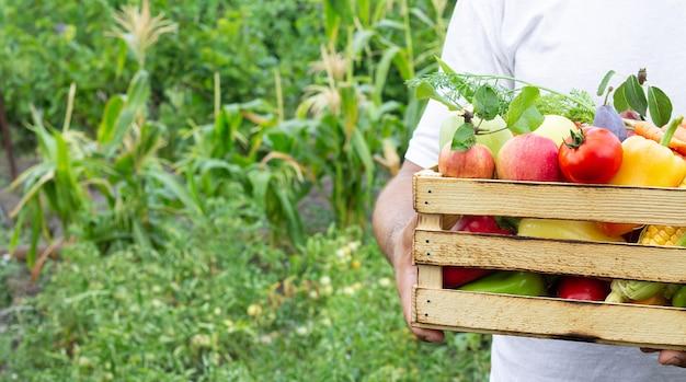 庭で熟した有機野菜や果物の木箱を抱きかかえた Premium写真