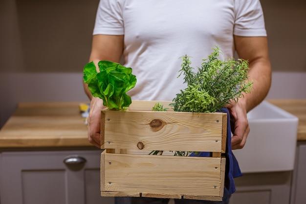 Un uomo tiene una scatola di legno con vegetazione, senza volto Foto Gratuite