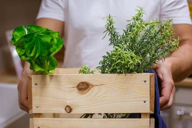 Un uomo tiene una scatola di legno con vegetazione Foto Gratuite