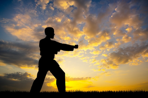 Man karate at sunset Premium Photo