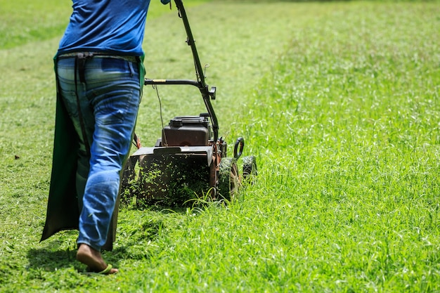 A man mowing grass in the garden Premium Photo