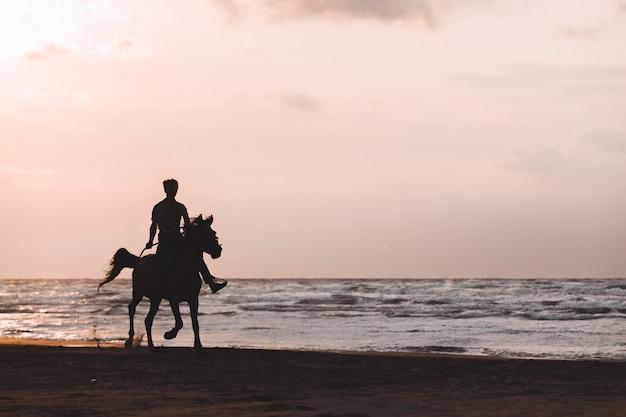 夕日のビーチで馬に乗る男 無料写真