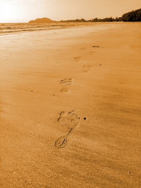 The man's footprints on the sand beach on vacation holiday relaxing time Premium Photo
