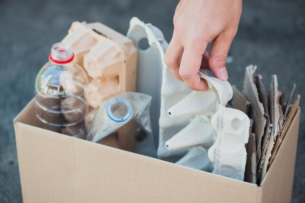 Man's hand collecting plastic bottles and egg carton in the recycle box Premium Photo