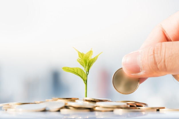 Man's hand put gold coin on pile coins with growing plant and cityscape backgrounds. Premium Photo