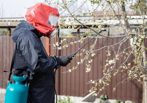 男は裏庭の花の木に農薬をスプレーします。害虫駆除 Premium写真