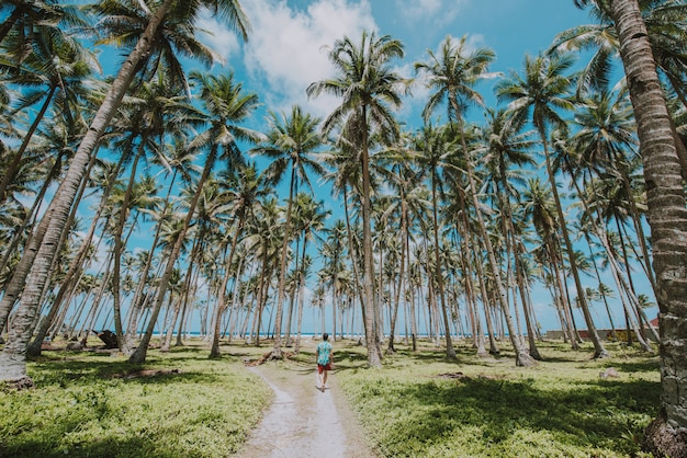Man standing on the beach and enjoying the tropical place with a view. caribbean sea colors and palm trees in the background. concept about travels and lifestyle Premium Photo