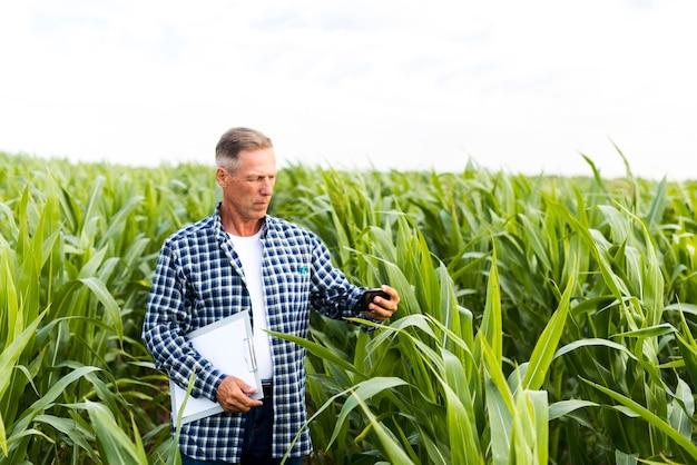 Man taking a selfie in a cornfield Free Photo