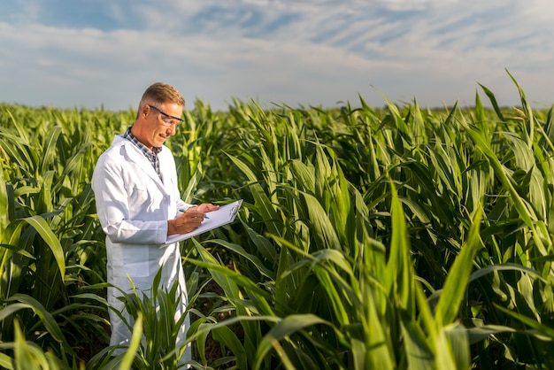 Man writing on a clipboard in a cornfield Free Photo