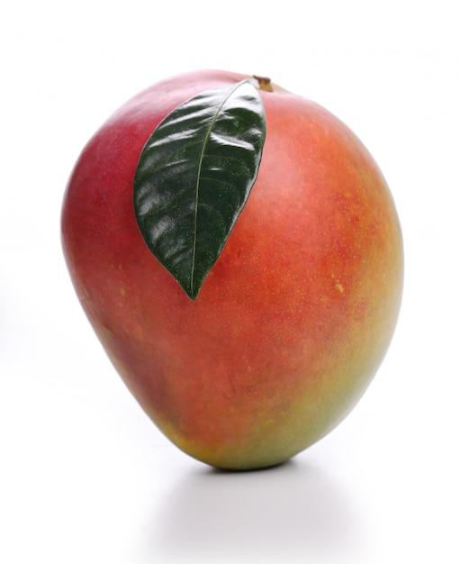 Mango Free Photo