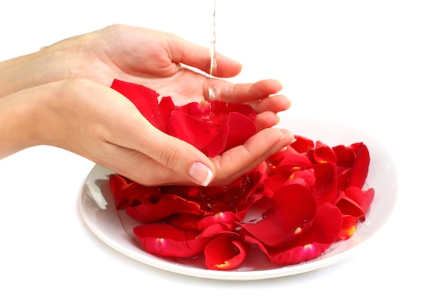 Manicure - hands with france colour nails, red rose petals and water - beauty salon Premium Photo
